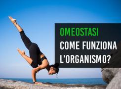 Omeostasi allenamento supercompensazione